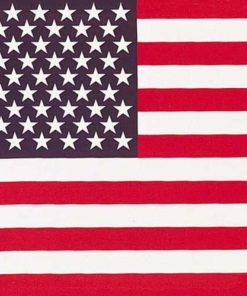 Bandana avec le drapeau américain