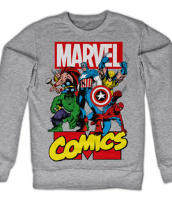 Sweat Marvel Comics Heroes de couleur Gris